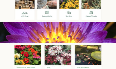 Web Design and SEO for Hill Country Water Gardens & Nursery in Cedar Park